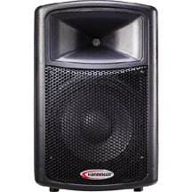 medium pa speaker