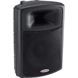 Large PA Speaker Rental
